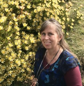 Cheryle Bannon yellow flowers