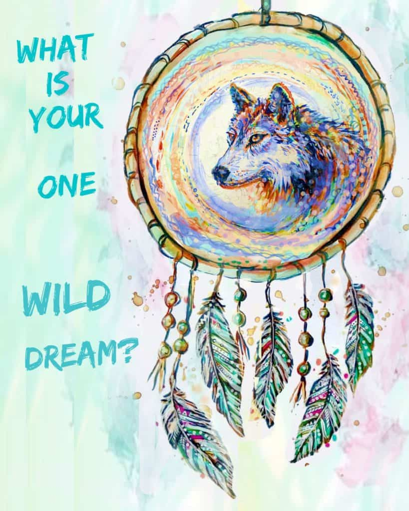 Wild Dreaming