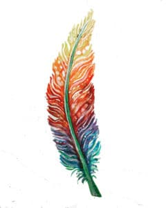Rainbow feather