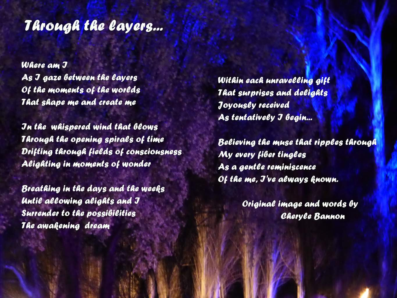 Musings...original photo and text by Cheryle Bannon