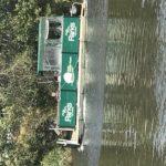 Herring Island Punt